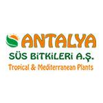 Antalya Süs Bitkileri